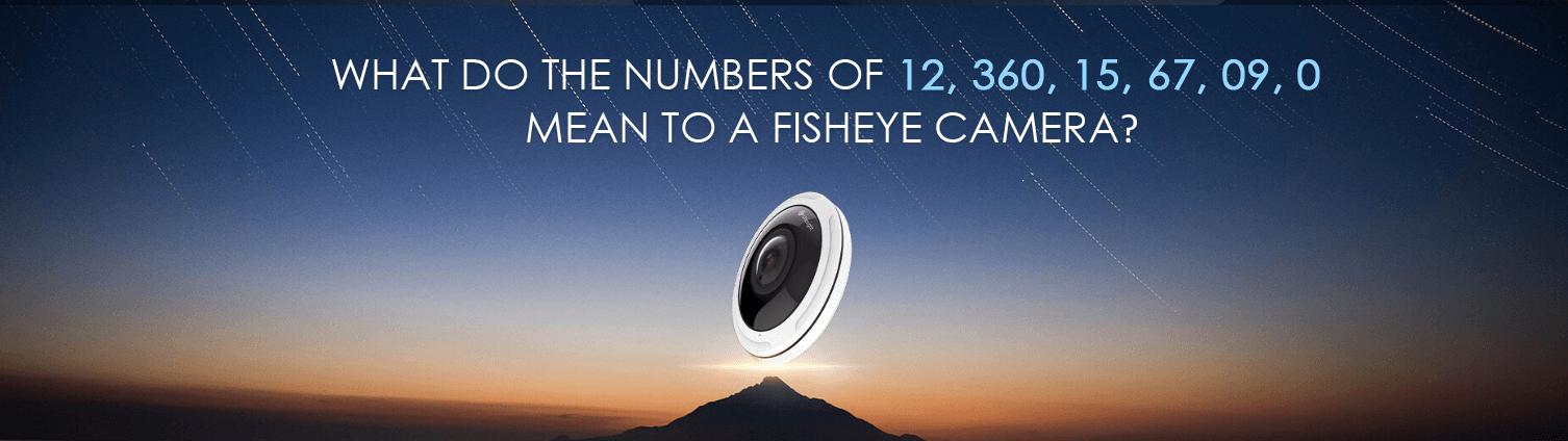 Milesight 12MP Fish Eye Camera